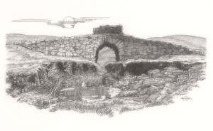 The W.P.A. Bridge - Steve Johnson